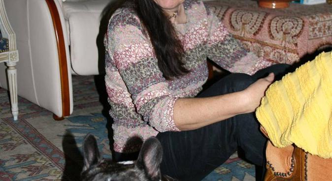Centre aéré 5 * des boules de poils, dog sitter à Bois-Guillaume