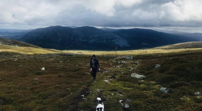 Två glada studenter söker hundsällskap!, hundvakt nära Göteborg