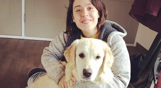 Walks, games and cuddles in Ashford, dog sitter in Ashford