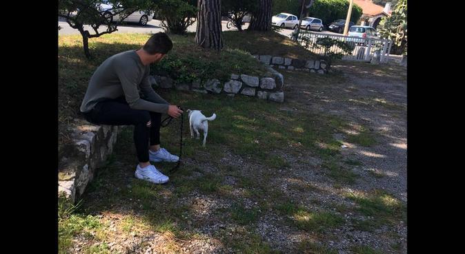Étudiant protecteur de chien, dog sitter à L'Abadie