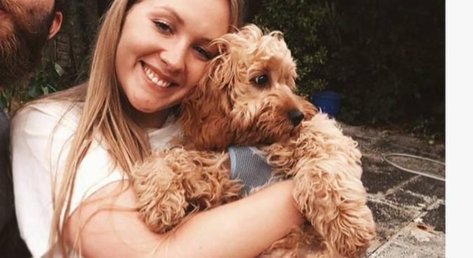 Dog best friend in Liverpool, dog sitter in Liverpool, UK
