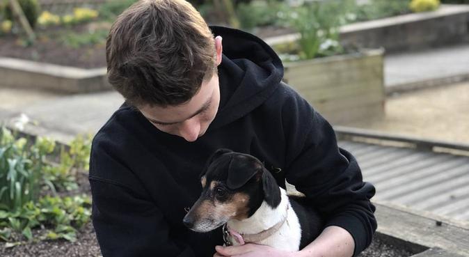 Les conditions idéales pour votre boule de poils, dog sitter à Angers, France