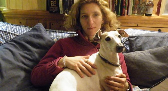PET PARADISE, dog sitter in London