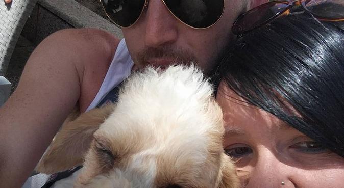 Danny's Doggy Day Care, hundvakt nära Stockholm