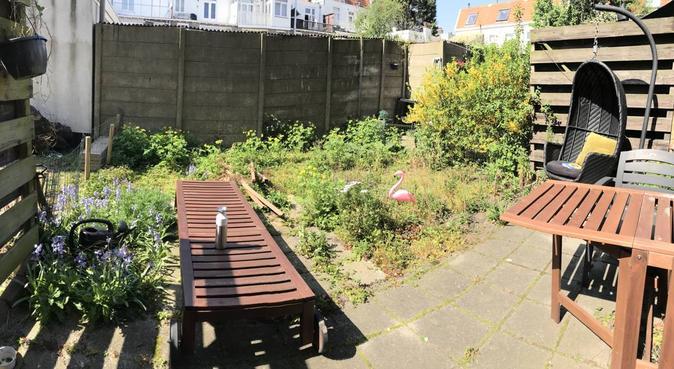 Doglover with garden in Regentessekwartier :), hondenoppas in Den Haag, Nederland