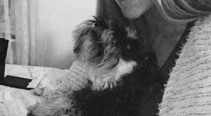 Energisk och kärleksfull hundpassare, hundvakt nära Örebro