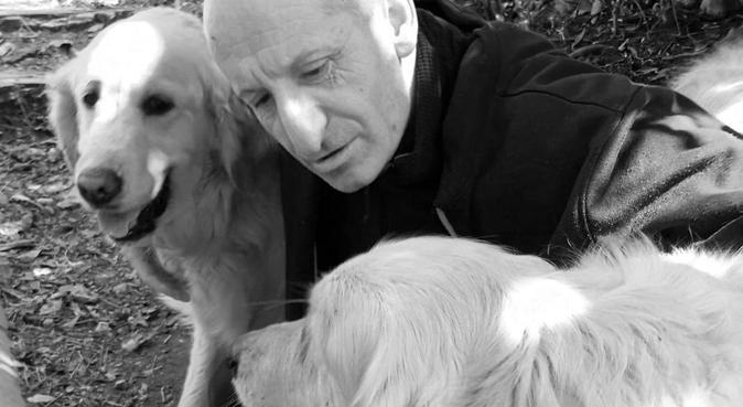 Le roi des câlins, dog sitter à Nice, France