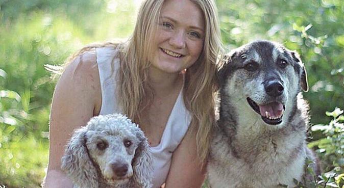 Savner en turkamerat!, hundepassere i Oslo, Norge