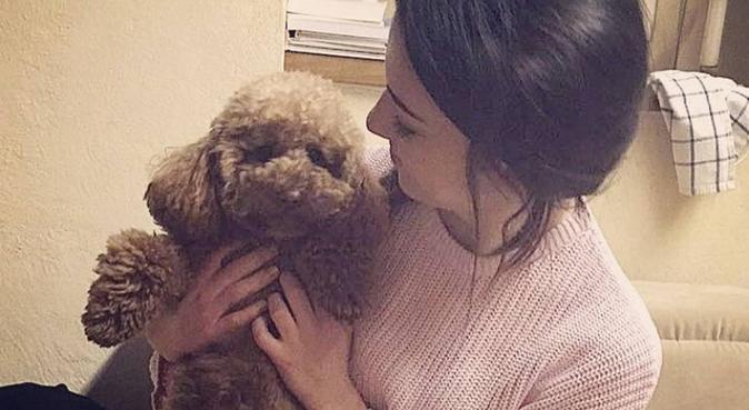 🐾 Le passeggiate con i cani sono più belle! 🐾, dog sitter a Verona