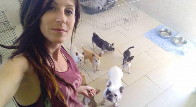 Cycy Z'animo, dog sitter à Saint-Nazaire