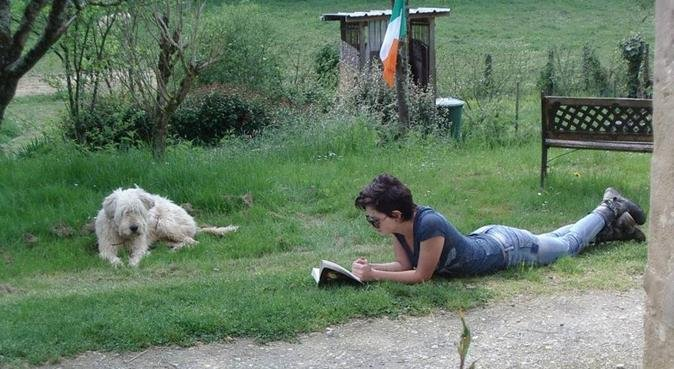 Dog walking in Cambridge, dog sitter in CAMBRIDGE
