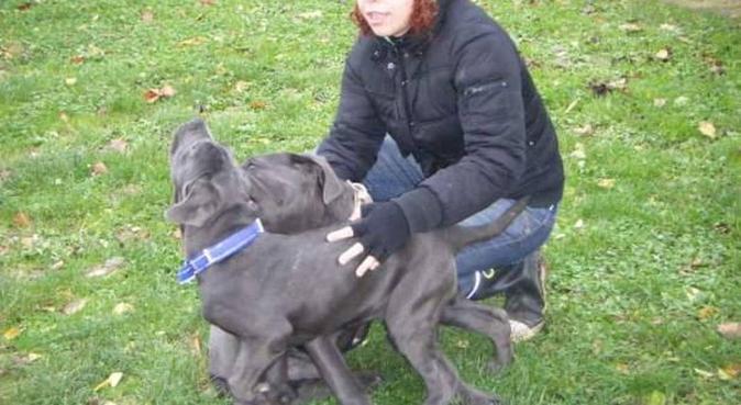 PASSEGGIATE,CORSE,COCCOLE E TANTE ATTENZIONI, dog sitter a Roma, RM, Italia