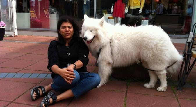 a friend who understands dog, hundvakt nära Göteborg