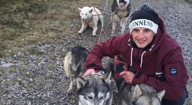 Dog Walking Services!, dog sitter in Aberdeen, UK