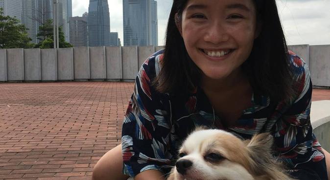 Dog walking at Durham city center!, dog sitter in durham