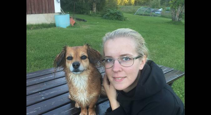 Lek- och kärleksfull hundpassning i Strömsund, hundvakt nära Strömsund