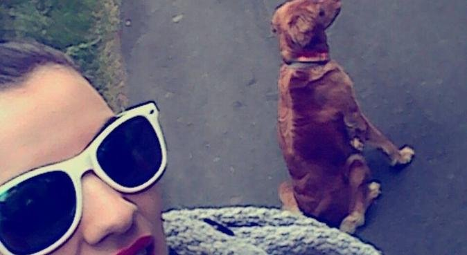 La dog-sitter, dog sitter à La milesse