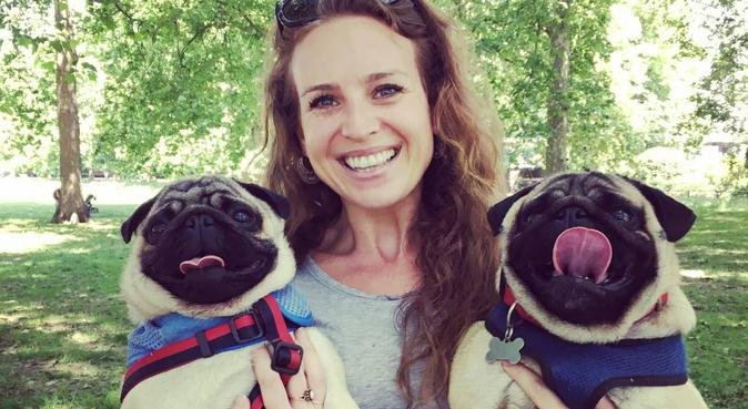 Work from home dog-lover with time and affection!, dog sitter in London