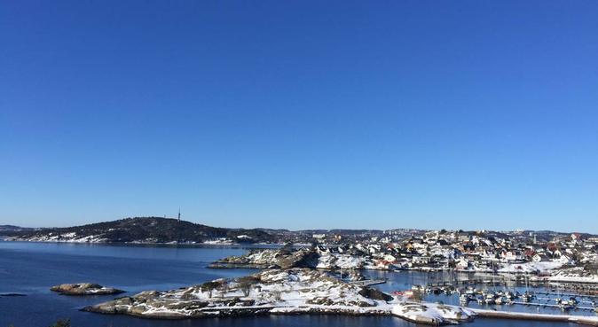 Hundepass, hundepassere i Kristiansand