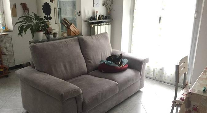 """coccole e andare a """"babi"""" sono la mia specialità, dog sitter a Genova"""