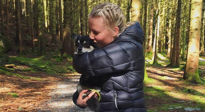 Søker turkamerat!, hundepassere i Stavanger