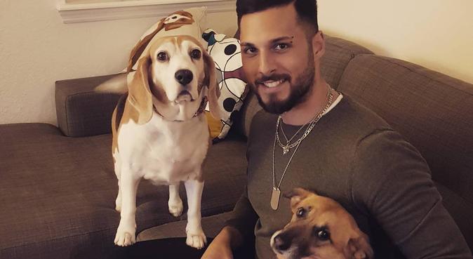 COCCOLE ,DIVERTIMENTO E TANTO AMORE, dog sitter a Napoli