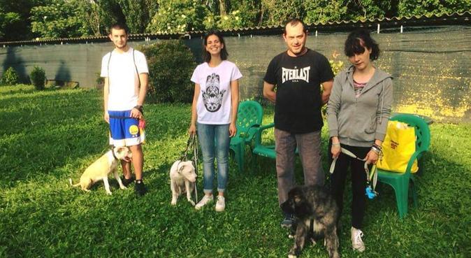 Passeggiate/soggiorni divertenti pieni di coccole, dog sitter a Parma