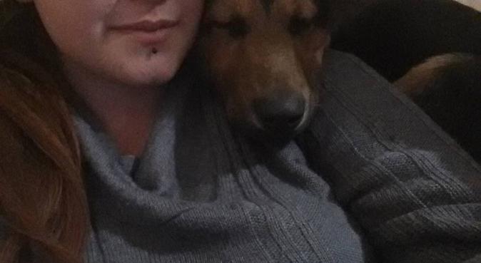Amante dei cani!, dog sitter a Quarto