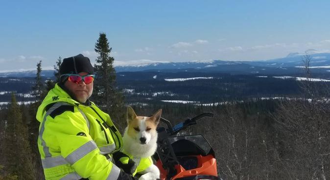 Långa, raska promenader med din hund, hundvakt nära BJÄRRED