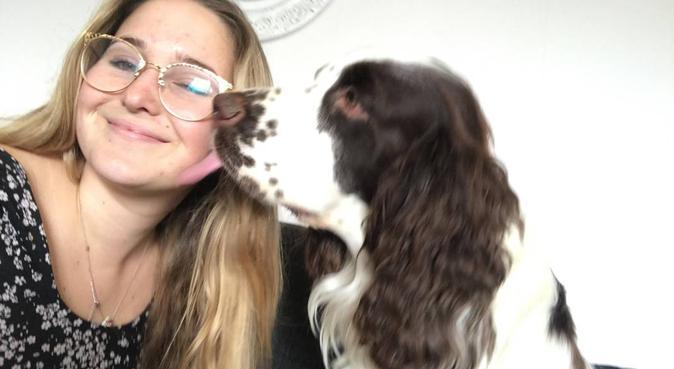 Erfaren hundvan och hundkär tjej!, hundvakt nära Uppsala, Sweden