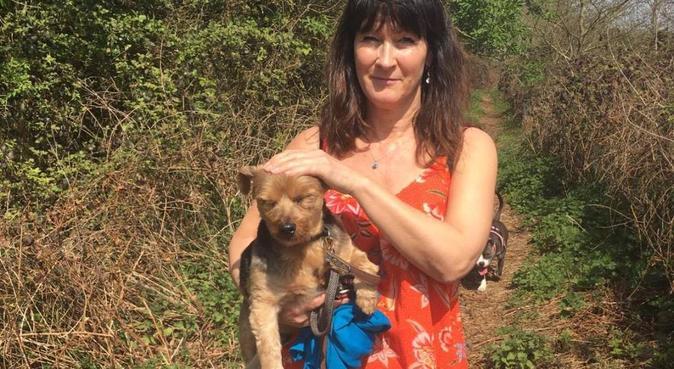 Home from Home in Upminster, dog sitter in Upminster