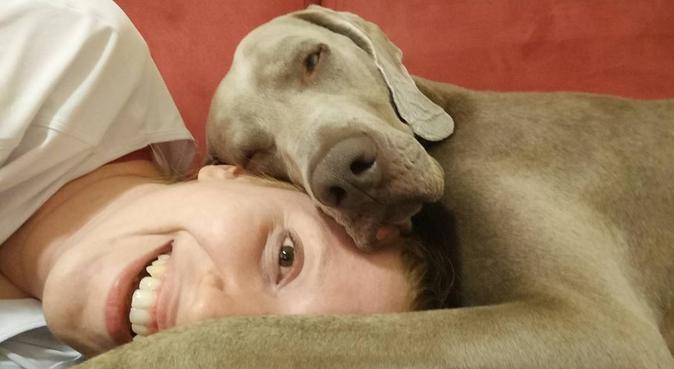 Laureanda Med.Vet. massima serietà ed affidabilità, dog sitter a Milano