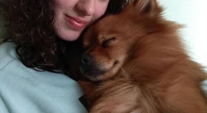 Diversión asegurada, cuido y paseo a tu perro!!, canguro en valencia