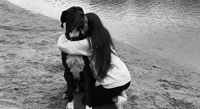 Étudiante expérimentée de confiance, dog sitter à Toulouse