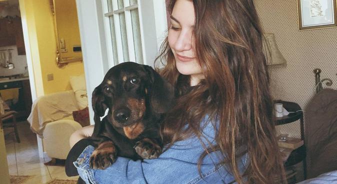Compagnia, passeggiate e cure di ogni tipo, dog sitter a Torino