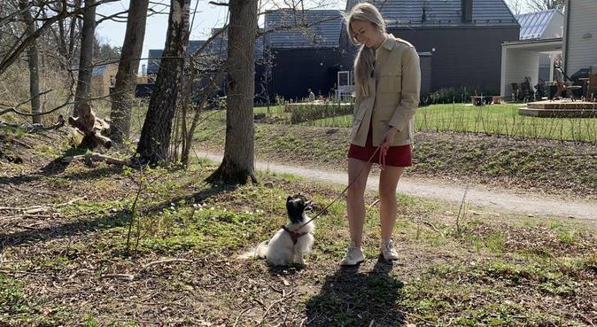 Flexibel och omtänksamhundpassning vid Mariatorget, hundvakt nära Stockholm, Sverige