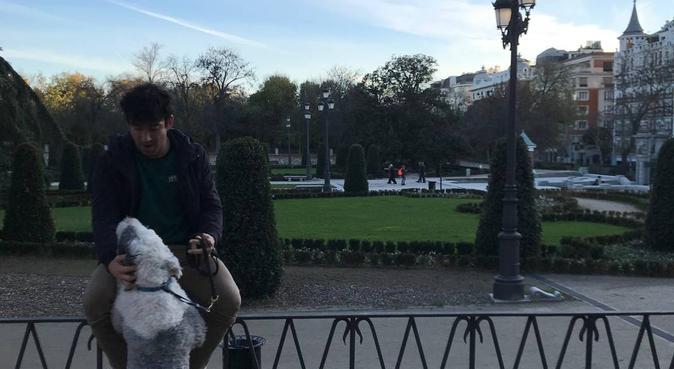 Felices momentos para tu perrito, canguro en Madrid, España