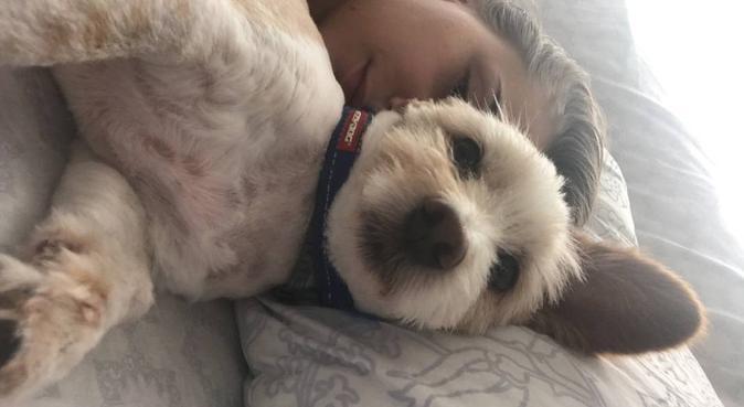 Fille de vétérinaire, dog lover-sitter à MTP !, dog sitter à Montpellier