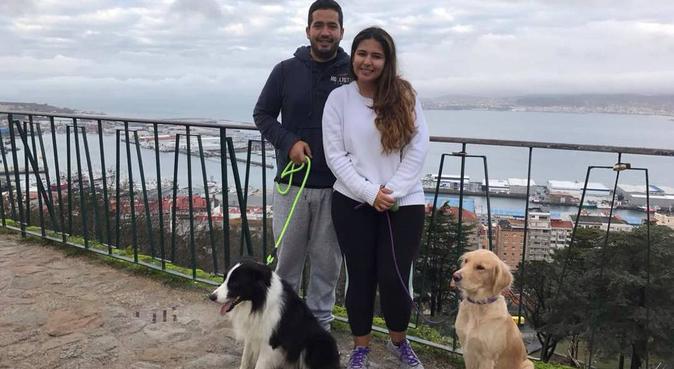 Spa, Mimos y Amor para nuestros consentidos 🐶, canguro en Madrid