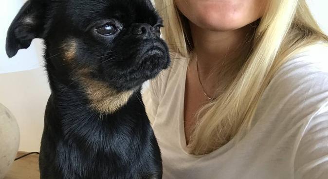 Älskar alla hundar, stora som små, hundvakt nära Täby, Sverige