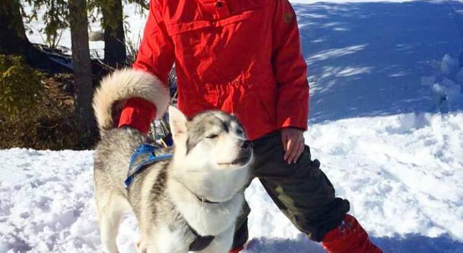 Turkamerater søkes ;), hundvakt nära Oslo