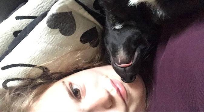 Experienced dog cuddling in Dorset, dog sitter in Dorchester
