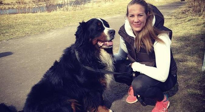 Hundpassning Finnboda/Nacka, hundvakt nära Nacka