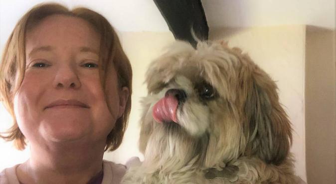 Pawsies, dog sitter in Kegworth