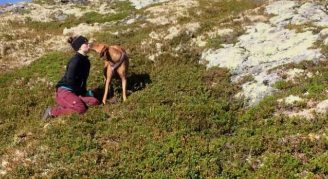 Miriam ønsker å lufte seg selv og din bestevenn, hundepassere i Laksevåg
