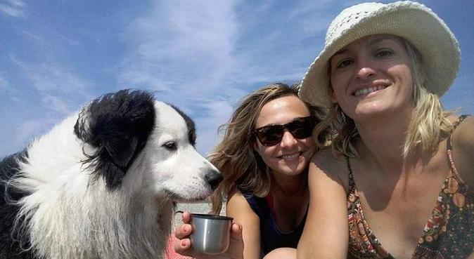 De l'amour et des câlins!, dog sitter à Avignon