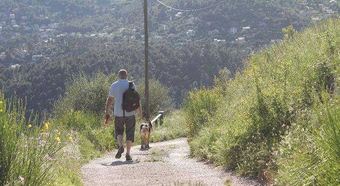 Promenades et garderie pour vos petits compagnons, dog sitter à Toulon