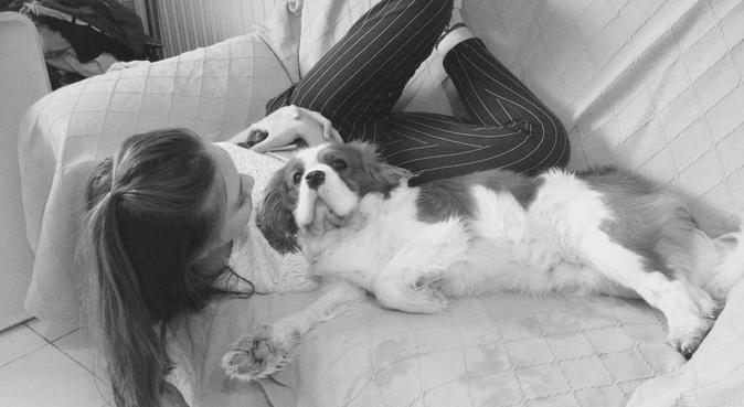 Aux petits soins de nos meilleurs amis canins, dog sitter à Nice, France