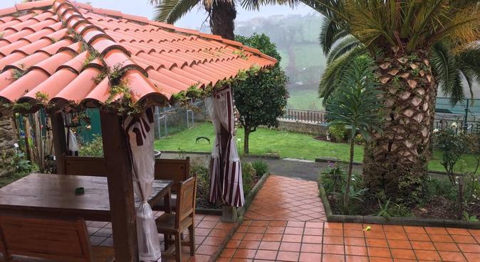 Paraíso perruno acogedor, canguro en Oviedo, España