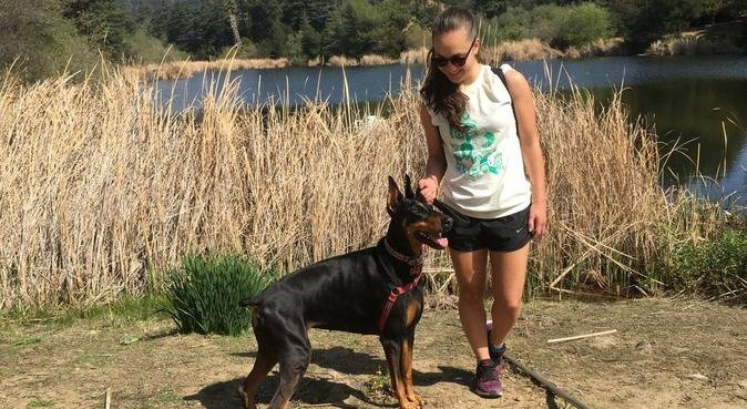 Doggy's happy time in Nantes, dog sitter à Nantes